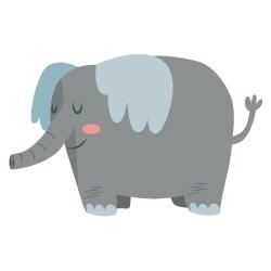 Kokarda